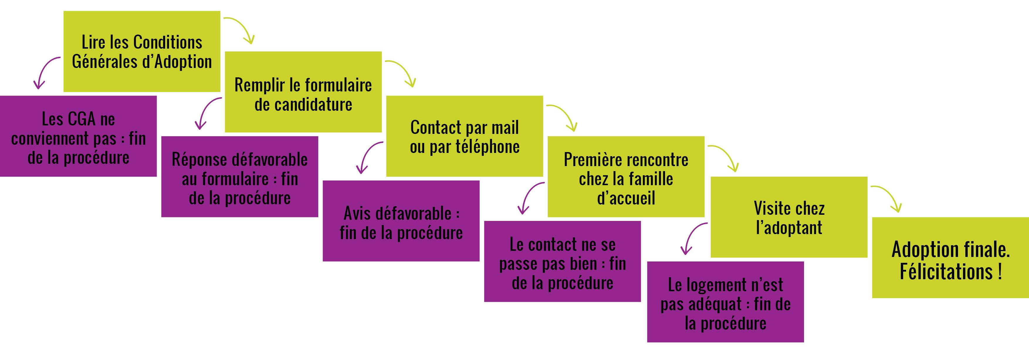 Processus d'adoption - comment adopter