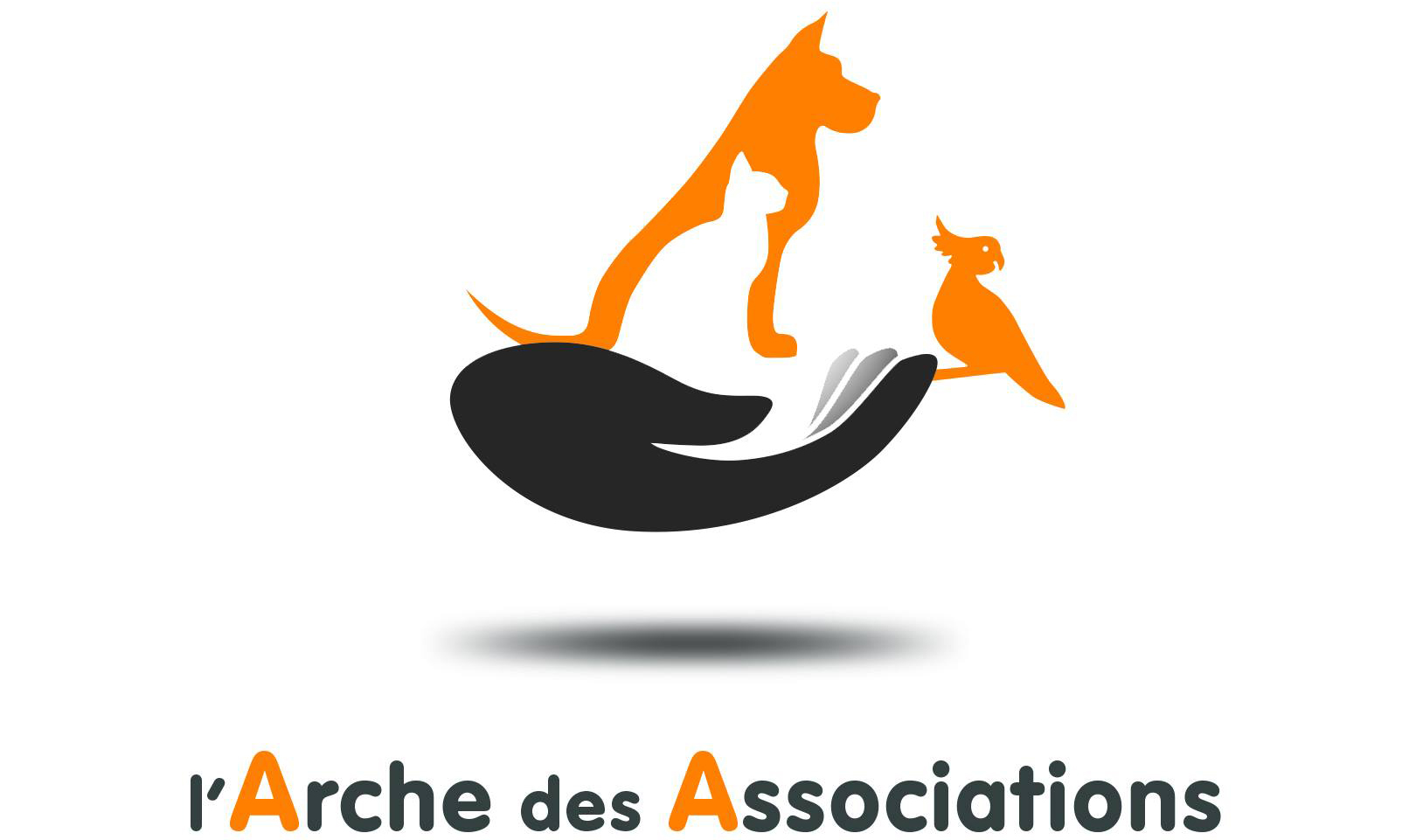 Arche des Association