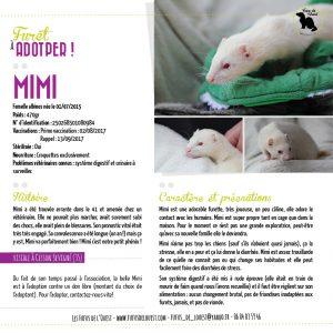 Mimi à adopter chez les fufus de l'ouest