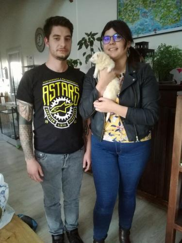 Dinky et sa nouvelle famille