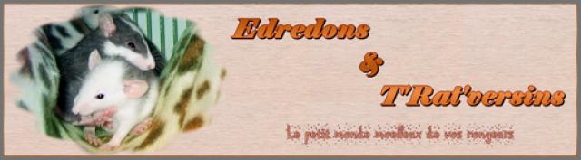 Édredons et T'rat'versins